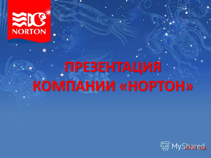 ПРЕЗЕНТАЦИЯ КОМПАНИИ «НОРТОН» 2008 год.