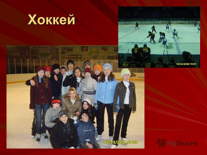 Хоккей Хоккей