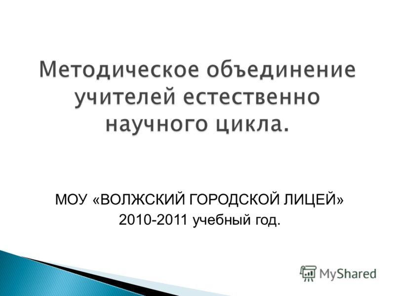 МОУ «ВОЛЖСКИЙ ГОРОДСКОЙ ЛИЦЕЙ» 2010-2011 учебный год.