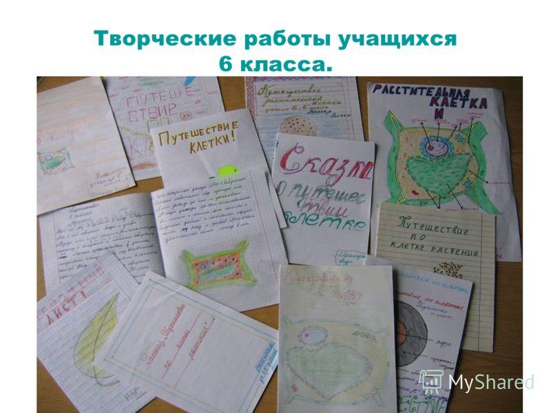 Творческие работы учащихся 6 класса.