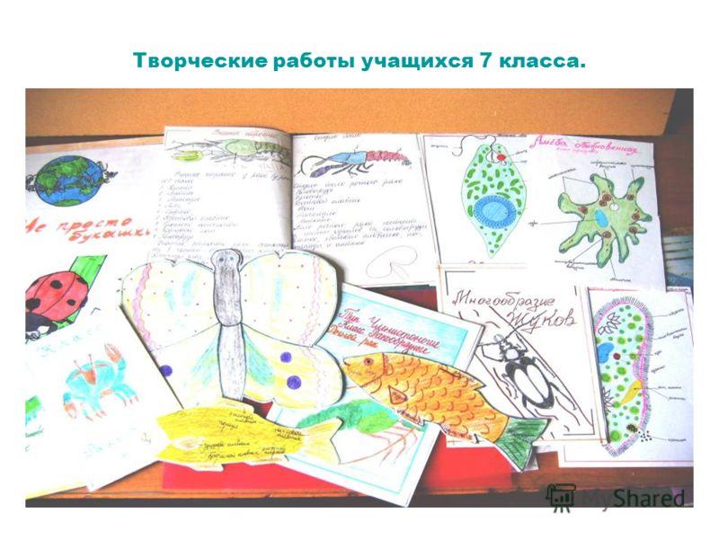 Творческие работы учащихся 7 класса.