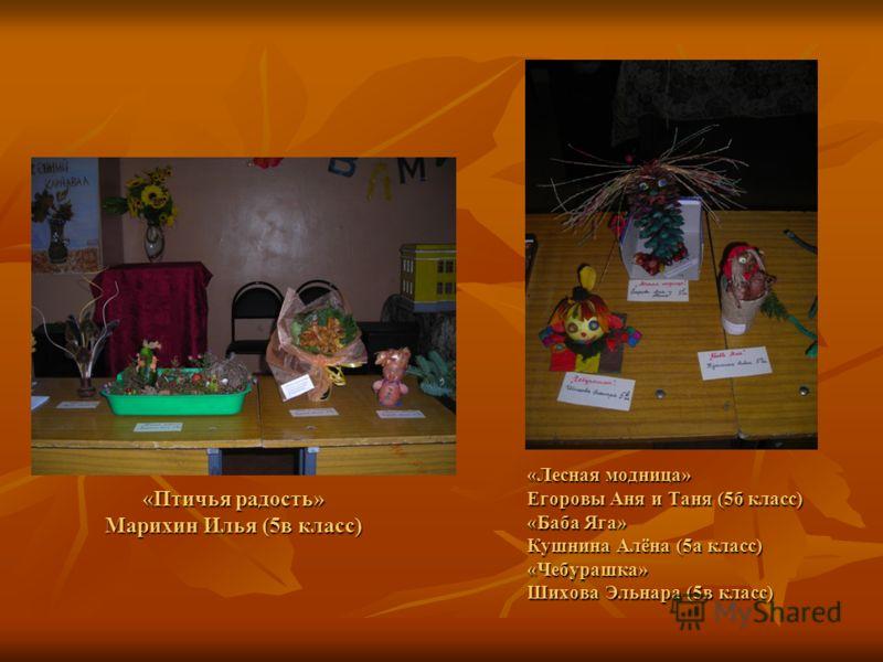 «Птичья радость» Марихин Илья (5в класс) «Лесная модница» Егоровы Аня и Таня (5б класс) «Баба Яга» Кушнина Алёна (5а класс) «Чебурашка» Шихова Эльнара (5в класс)