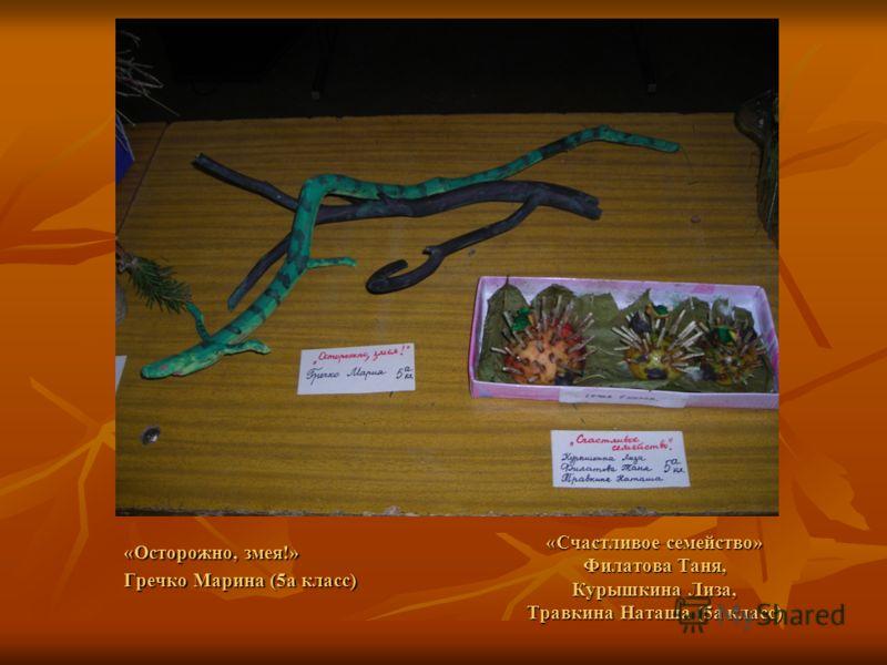 «Счастливое семейство» Филатова Таня, Курышкина Лиза, Травкина Наташа (5а класс) «Осторожно, змея!» Гречко Марина (5а класс)