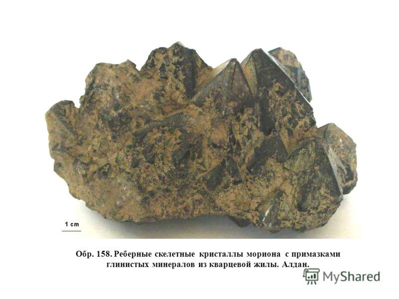 Обр. 158. Реберные скелетные кристаллы мориона с примазками глинистых минералов из кварцевой жилы. Алдан.