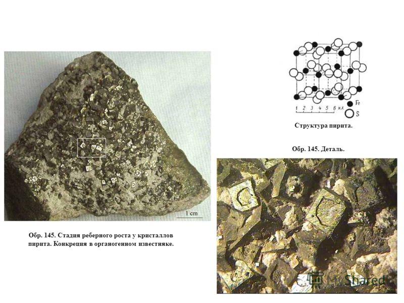 Обр. 145. Стадия реберного роста у кристаллов пирита. Конкреция в органогенном известняке. Обр. 145. Деталь. Структура пирита.