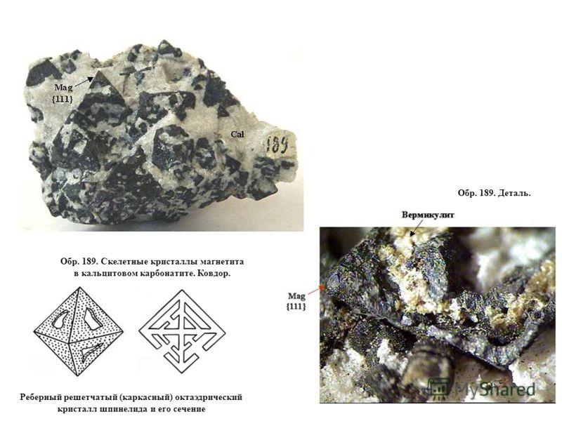 Обр. 189. Скелетные кристаллы магнетита в кальцитовом карбонатите. Ковдор. Обр. 189. Деталь. Реберный решетчатый (каркасный) октаэдрический кристалл шпинелида и его сечение