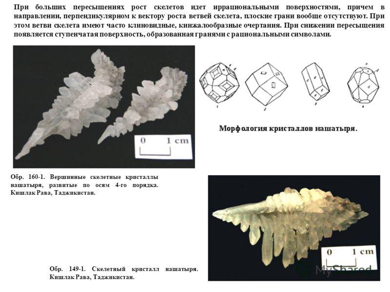 Обр. 149-1. Скелетный кристалл нашатыря. Кишлак Рава, Таджикистан. Обр. 160-1. Вершинные скелетные кристаллы нашатыря, развитые по осям 4-го порядка. Кишлак Рава, Таджикистан. При больших пересыщениях рост скелетов идет иррациональными поверхностями,