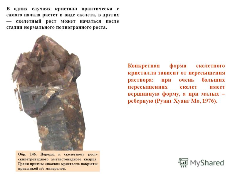 Обр. 146. Переход к скелетному росту скипетровидного аметистовидного кварца. Грани призмы «ножки» кристалла покрыты присыпкой м/з минералов. В одних случаях кристалл практически с самого начала растет в виде скелета, в других скелетный рост может нач