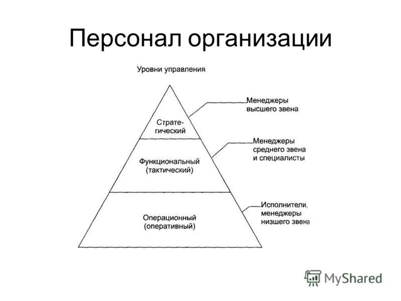 Персонал организации