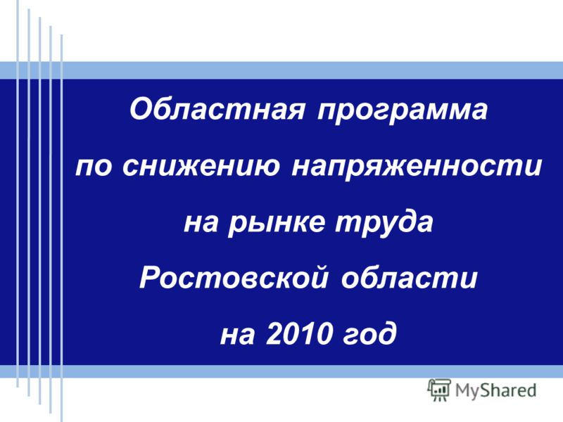 Областная программа по снижению напряженности на рынке труда Ростовской области на 2010 год