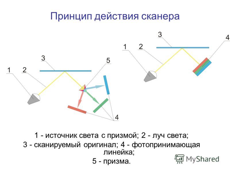 1 - источник света с призмой; 2 - луч света; 3 - сканируемый оригинал; 4 - фотопринимающая линейка; 5 - призма. Принцип действия сканера
