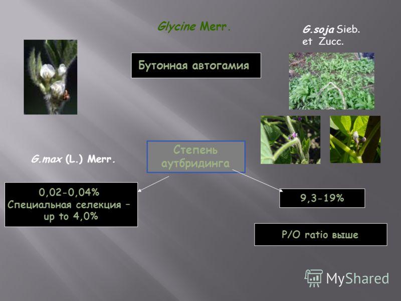 Glycine Merr. G.soja Sieb. еt Zucc. G.max (L.) Merr. Степень аутбридинга 0,02-0,04% Специальная селекция – up to 4,0% 9,3-19% Бутонная автогамия P/O ratio выше