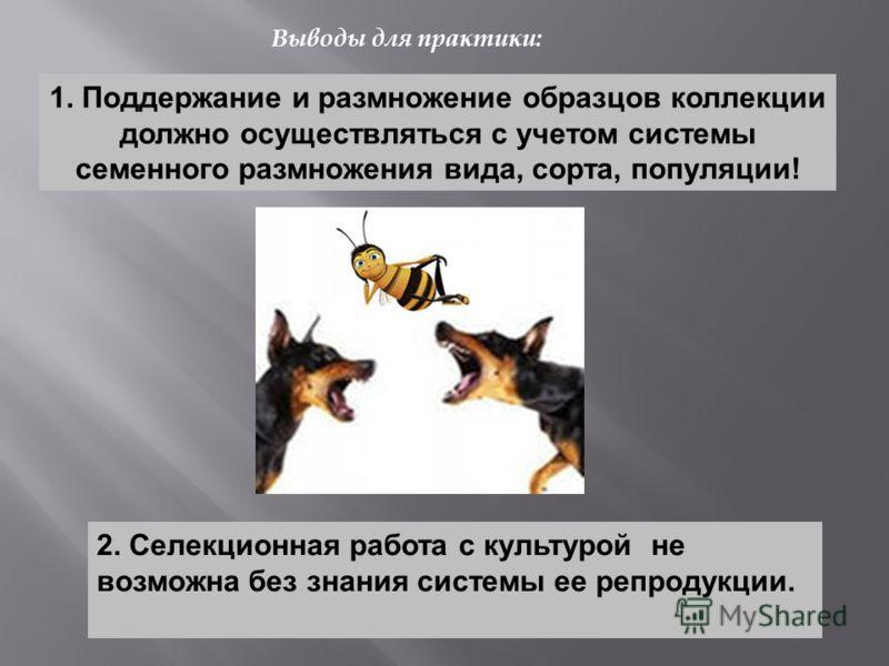 1. Поддержание и размножение образцов коллекции должно осуществляться с учетом системы семенного размножения вида, сорта, популяции! 2. Селекционная работа с культурой не возможна без знания системы ее репродукции. Выводы для практики: