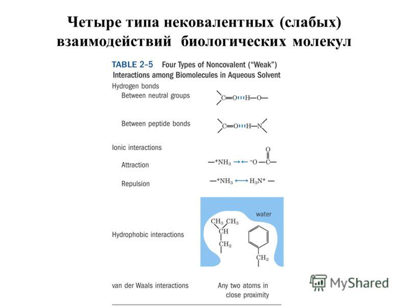 Четыре типа нековалентных (слабых) взаимодействий биологических молекул
