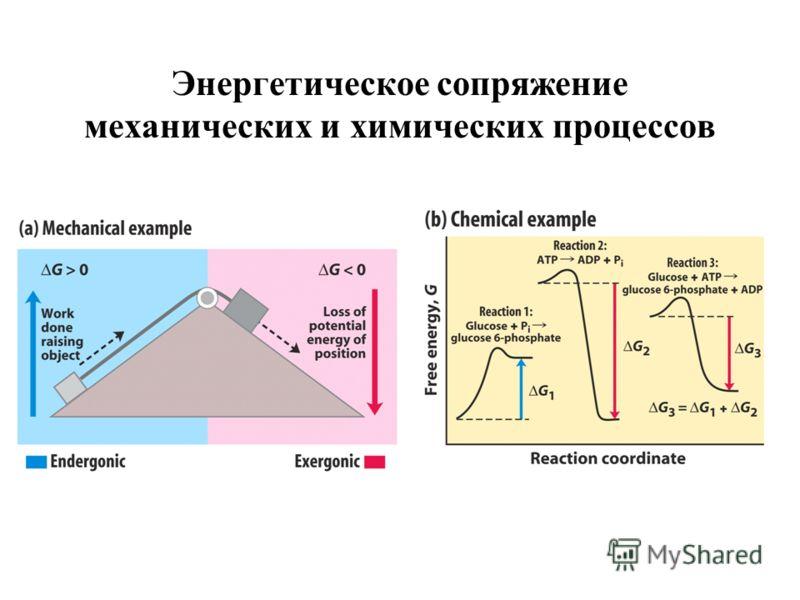 Энергетическое сопряжение механических и химических процессов