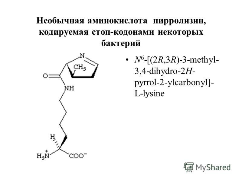 Необычная аминокислота пирролизин, кодируемая стоп-кодонами некоторых бактерий N 6 -[(2R,3R)-3-methyl- 3,4-dihydro-2H- pyrrol-2-ylcarbonyl]- L-lysine