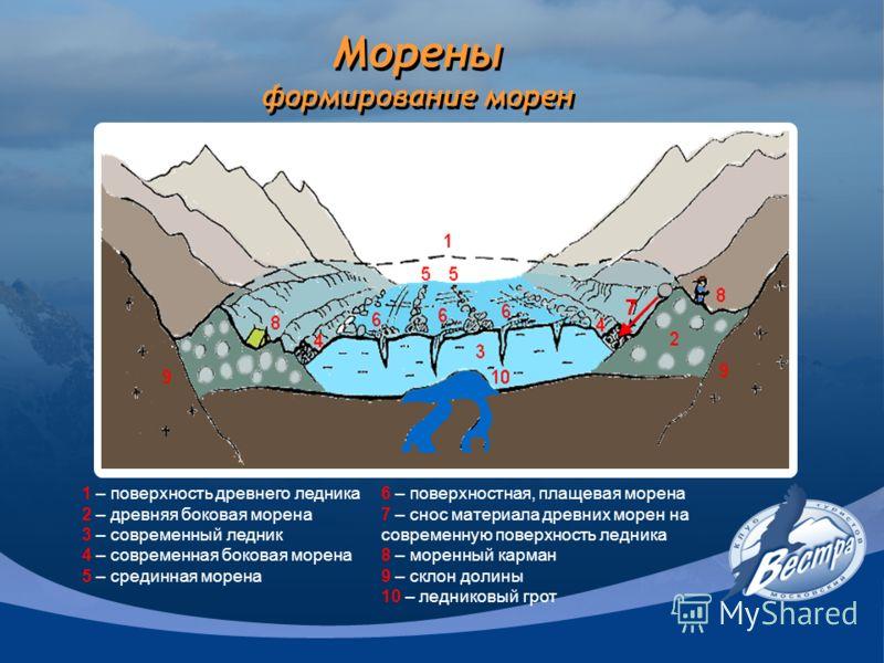Морены формирование морен 1 – поверхность древнего ледника 2 – древняя боковая морена 3 – современный ледник 4 – современная боковая морена 5 – срединная морена 6 – поверхностная, плащевая морена 7 – снос материала древних морен на современную поверх
