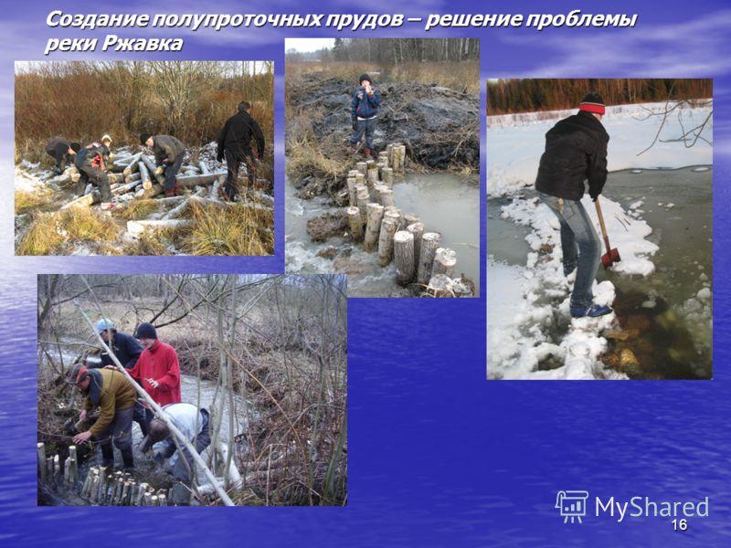 Создание полупроточных прудов – решение проблемы реки Ржавка 16