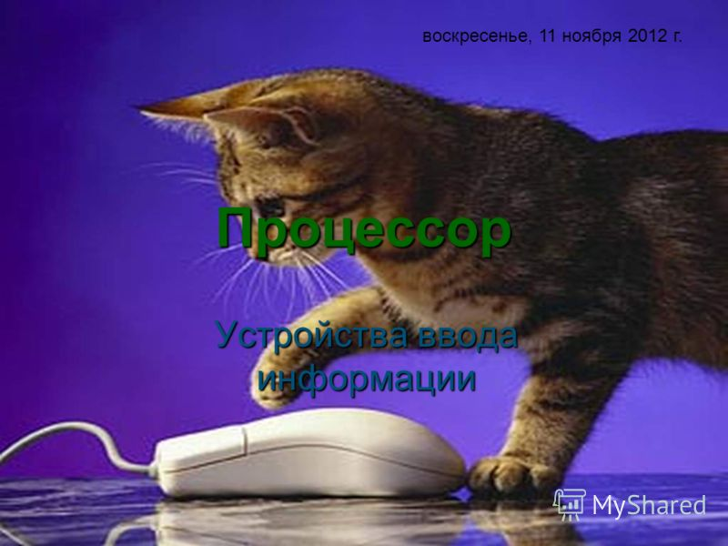 Процессор Устройства ввода информации воскресенье, 11 ноября 2012 г.