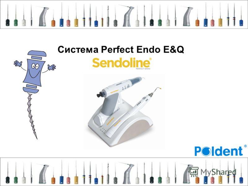 Система Perfect Endo E&Q
