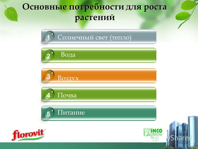 Основные потребности для роста растений Воздух Почва Питание 5 3 4 Солнечный свет (тепло) 1 Почва 3 коммуникационные факторы Вода 2 6