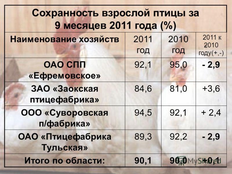 Сохранность молодняка птицы за 9 месяцев 2011 года (%) Наименование хозяйств2011 год 2010 год 2011 к 2010 году(+,-) ОАО СПП «Ефремовское » 98,3%98,8- 0,5% ЗАО «Заокская птицефабрика» 97,398,8- 1,5 ООО «Суворовская п/фабрика» 99,2 0 ОАО «Птицефабрика