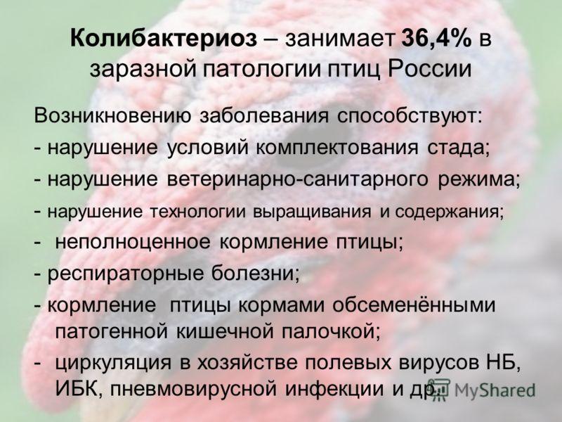 Удельный вес Н/П в заразной патологии птиц в России за 1 полугодие 2011 года (%) п/п Наименование болезней % в заразной патологии 1. Колибактериоз36,4 2. Сальмонеллёз14,5 3. Кокцидиоз9,6 4. Орнитоз4,2 5. Пастереллёз9,6 6. Ньюкаслская болезнь0,8 7. Ас