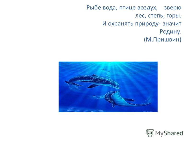 Рыбе вода, птице воздух, зверю лес, степь, горы. И охранять природу- значит Родину. (М.Пришвин)