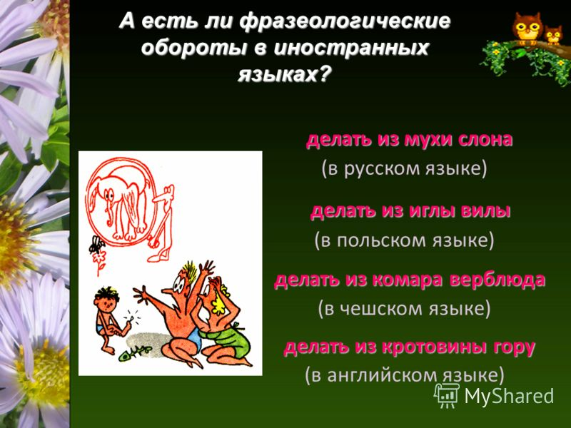 А есть ли фразеологические обороты в иностранных языках? делать из мухи слона (в русском языке) делать из иглы вилы (в польском языке) делать из комара верблюда (в чешском языке) делать из кротовины гору (в английском языке)