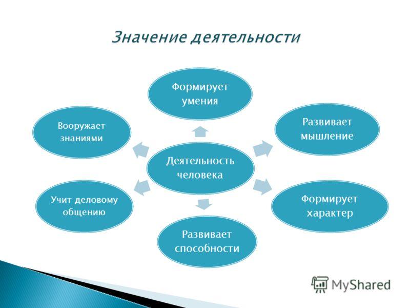 Деятельность человека Формирует умения Развивает мышление Формирует характер Развивает способности Учит деловому общению Вооружает знаниями