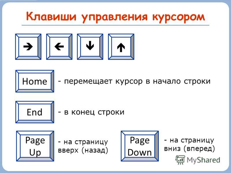 Клавиши управления курсором - перемещает курсор в начало строки - в конец строки - на страницу вверх (назад) - на страницу вниз (вперед) Home End Page Down Page Up