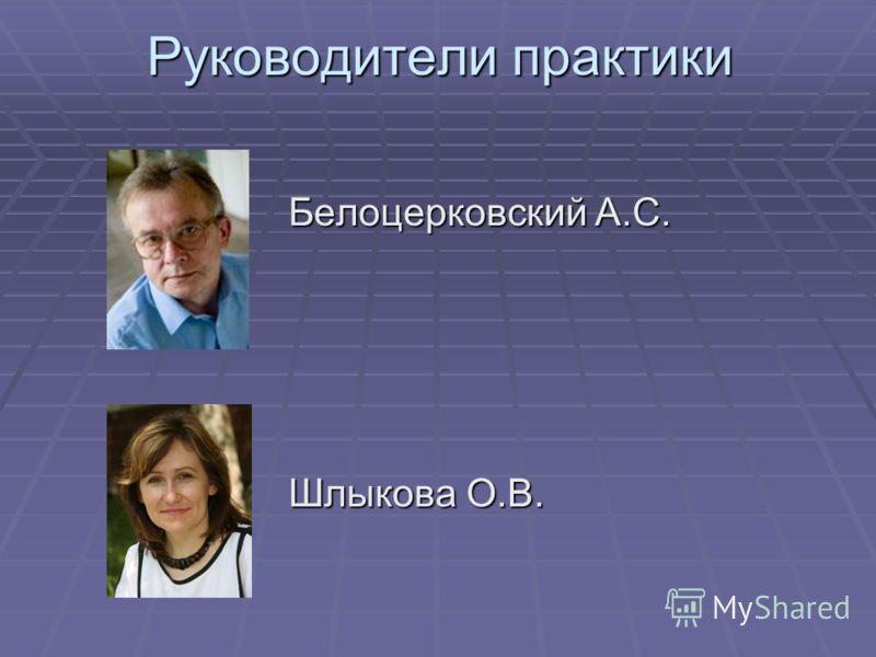 Руководители практики Белоцерковский А.С. Шлыкова О.В.