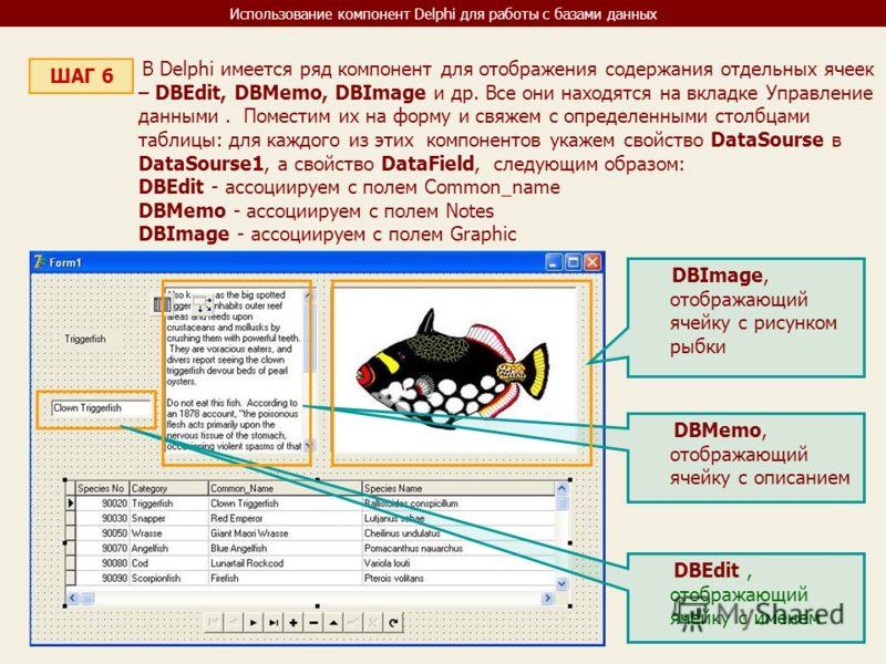 Использование компонент Delphi для работы с базами данных ШАГ 6 В Delphi имеется ряд компонент для отображения содержания отдельных ячеек – DBEdit, DBMemo, DBImage и др. Все они находятся на вкладке Управление данными. Поместим их на форму и свяжем с