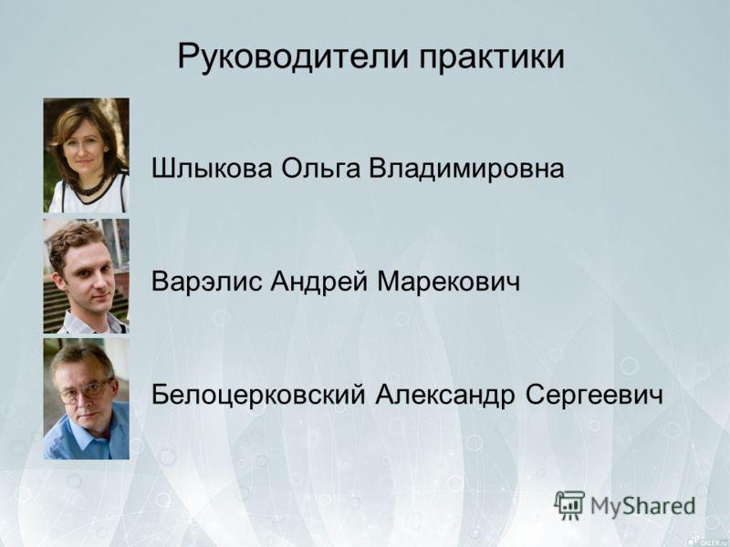 Руководители практики Шлыкова Ольга Владимировна Варэлис Андрей Марекович Белоцерковский Александр Сергеевич