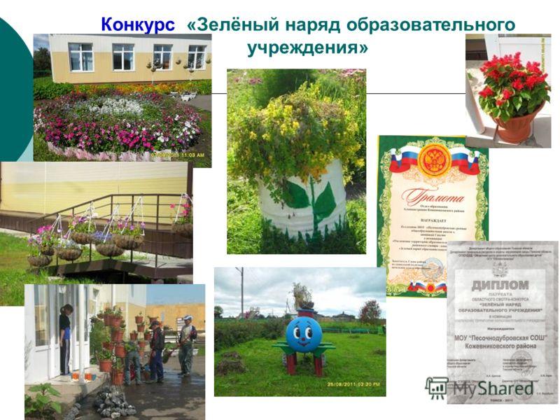 Конкурс «Зелёный наряд образовательного учреждения»