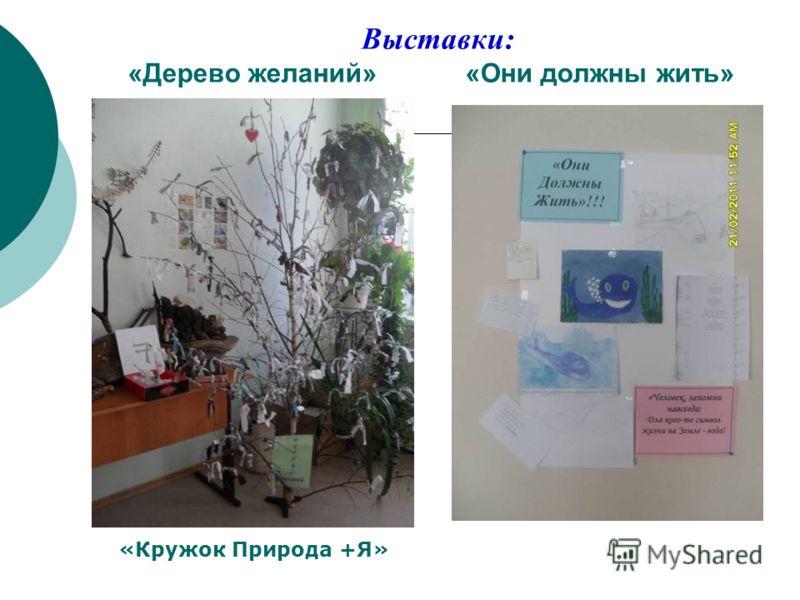 Выставки: «Дерево желаний» «Они должны жить» «Кружок Природа +Я»