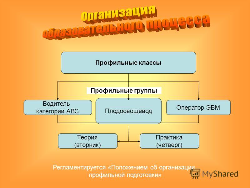 Регламентируется «Положением об организации профильной подготовки» Профильные классы Водитель категории АВС Плодоовощевод Оператор ЭВМ Теория (вторник) Практика (четверг) Профильные группы