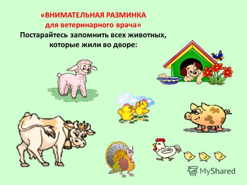 «ВНИМАТЕЛЬНАЯ РАЗМИНКА для ветеринарного врача» Постарайтесь запомнить всех животных, которые жили во дворе: