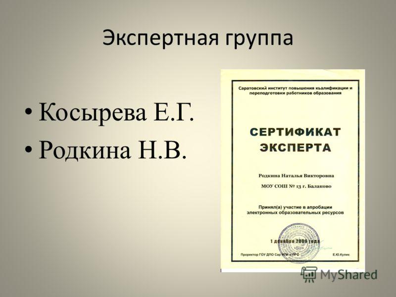 Экспертная группа Косырева Е.Г. Родкина Н.В.