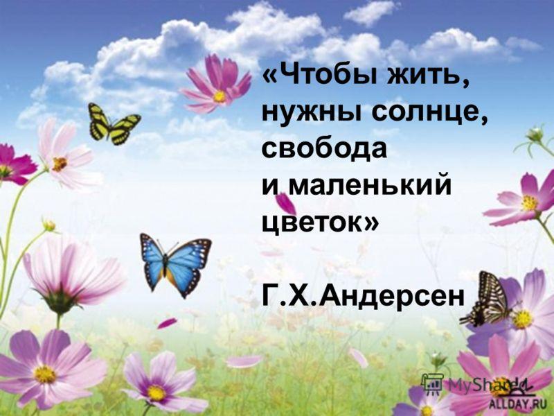 « Чтобы жить, нужны солнце, свобода и маленький цветок » Г. Х. Андерсен