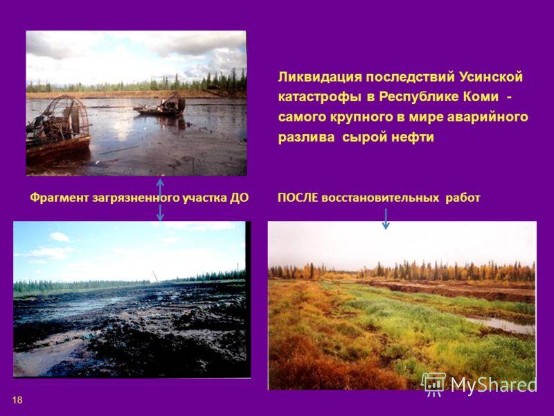 Ликвидация последствий Усинской катастрофы в Республике Коми - самого крупного в мире аварийного разлива сырой нефти Фрагмент загрязненного участка ДО ПОСЛЕ восстановительных работ 18