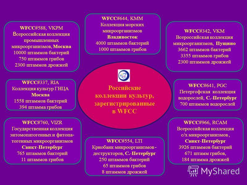 Российские коллекции культур, зарегистрированные в WFCC WFCC#337, RIA Коллекция культур ГНЦА Москва 1558 штаммов бактерий 394 штамма грибов WFCC#641, PGC Петергофская коллекция водорослей, С.-Петербург 700 штаммов водорослей WFCC#588, VKPM В сероссий