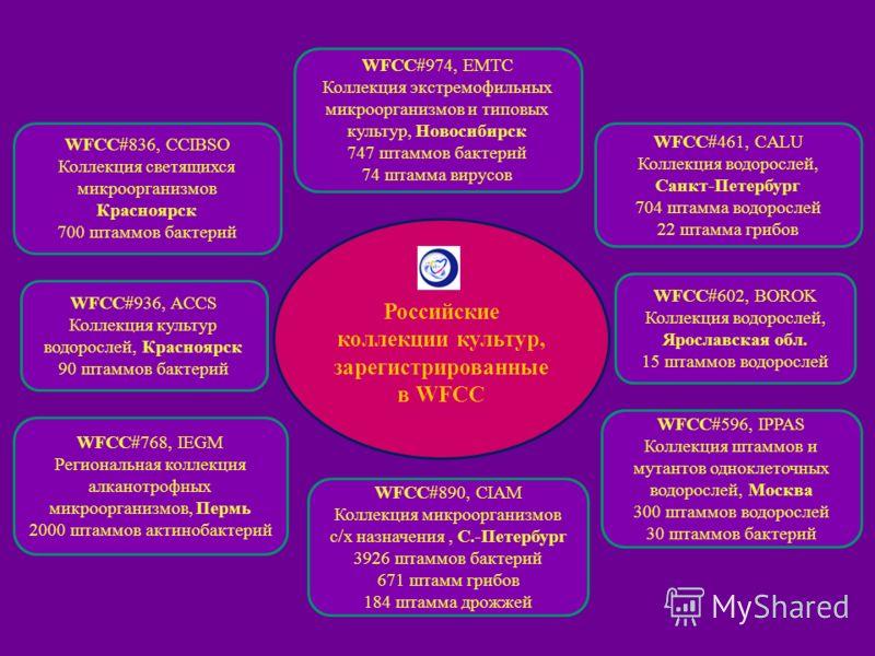 Российские коллекции культур, зарегистрированные в WFCC WFCC#936, ACCS Коллекция культур водорослей, Красноярск 90 штаммов бактерий WFCC#602, BOROK Коллекция водорослей, Ярославская обл. 15 штаммов водорослей WFCC#836, CCIBSO Коллекция светящихся мик