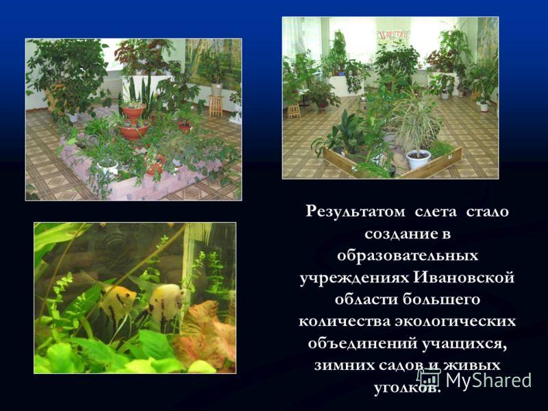 Результатом слета стало создание в образовательных учреждениях Ивановской области большего количества экологических объединений учащихся, зимних садов и живых уголков.