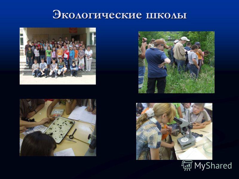 Экологические школы