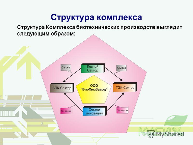 Структура комплекса Структура Комплекса биотехнических производств выглядит следующим образом: