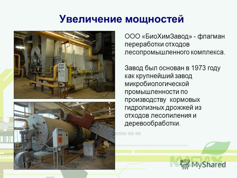 ООО «БиоХимЗавод» - флагман переработки отходов лесопромышленного комплекса. Завод был основан в 1973 году как крупнейший завод микробиологической промышленности по производству кормовых гидролизных дрожжей из отходов лесопиления и деревообработки. У