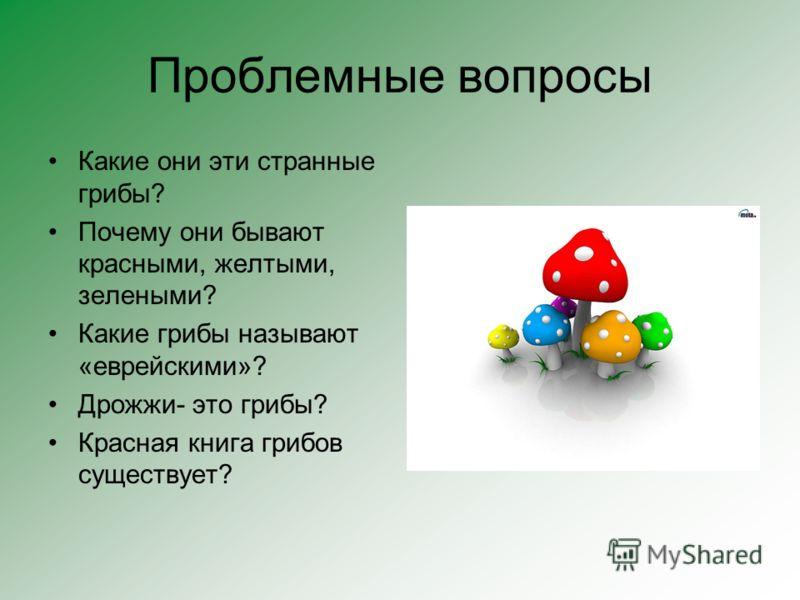 Проблемные вопросы Какие они эти странные грибы? Почему они бывают красными, желтыми, зелеными? Какие грибы называют «еврейскими»? Дрожжи- это грибы? Красная книга грибов существует?