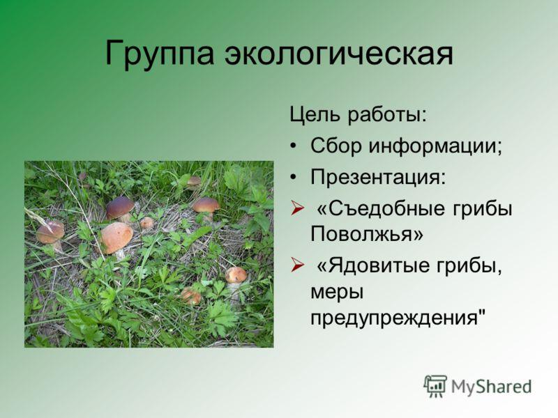 Группа экологическая Цель работы: Сбор информации; Презентация: «Съедобные грибы Поволжья» «Ядовитые грибы, меры предупреждения