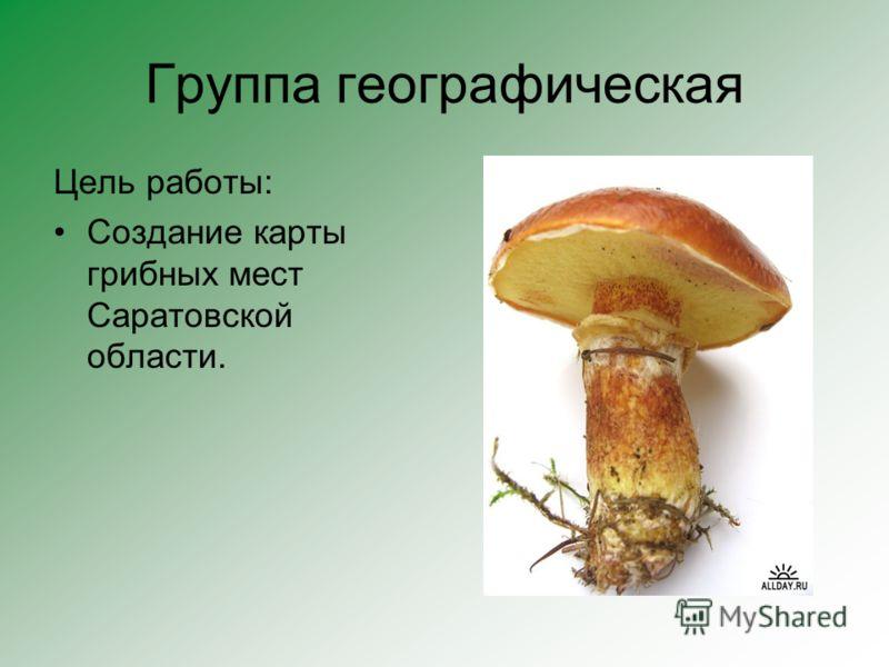 Группа географическая Цель работы: Создание карты грибных мест Саратовской области.